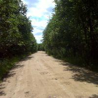 Дорога в Пятницу-Плот, Калинин