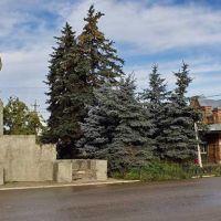 памятник В.И. Ленину, Кашин