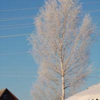 Какое небо голубое!, Кесова Гора