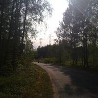 Вид на переходные опоры ЛЭП, Конаково