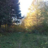 Осенняя тропинка, Кувшиново