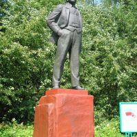 Памятник Ленину в центре села, Лесное