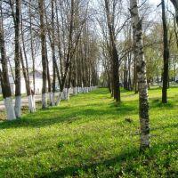 Парк, Лихославль