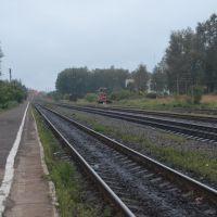 Станция Нелидово. Вид в сторону разъезда Подсосенка., Нелидово
