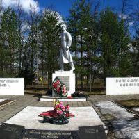 братская могила, Оленино