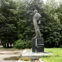 Осташков. Ленин, Осташков