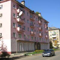 Розовый дом / Pink House, Ржев