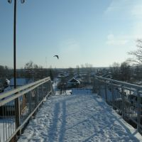 Сонково... мост... птица... небо... 21.02.2009 г. 15:20..., Сонково