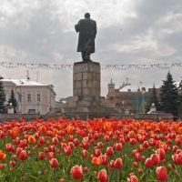 Tulips and Lenin, Тверь