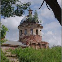 Торжок. Купол Покровской церкви. 07.2012., Торжок