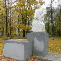 Ленин в Торопце, Торопец