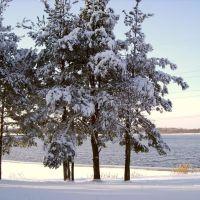 Незамерзающее озеро Песьво, Удомля
