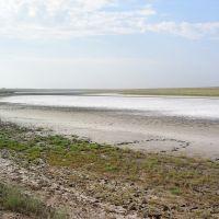 Высохшее соленое озеро, Приютное