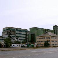 Элестинский элеватор, Приютное