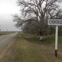 Въезд в село Овощи, Приютное