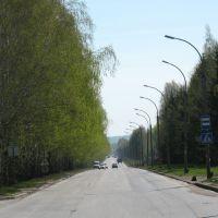 Дорога домой, Советское