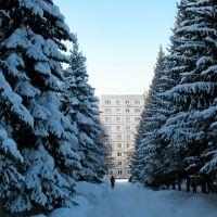 Сибирские джунгли.., Советское