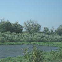 Volga, Юста