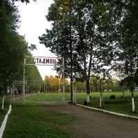 Стадион, Барятино