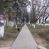 Поздняя осень в Белоусово, Белоусово