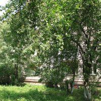Белоусово - Утопает в зелени, Белоусово
