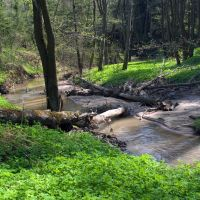 река Дырочная в мае, Белоусово
