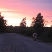 Morning, Дудоровский