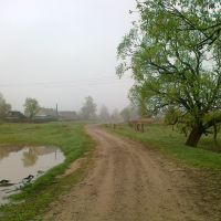 near Bryn village, Думиничи