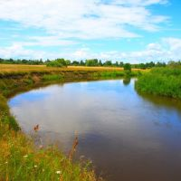 Река Жиздра, Думиничи