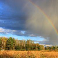 Rainbow, Думиничи