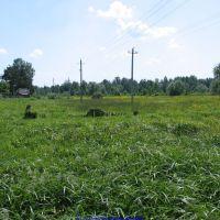 Вид на гутовский луг со стороны ул.Пушкина (11.06.2009), Еленский