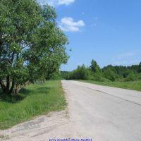 Дорога на Клён со стороны перекрёстка улиц Королёва и Октябрьской (11.06.2009), Еленский