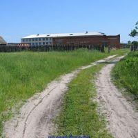 Задний въезд в еленскую среднюю школу (11.06.2009), Еленский