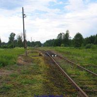 Ж.д. переезд, дорога на Брянск (12.06.2009), Еленский