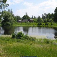 Гутовский пруд (12.06.2009), Еленский