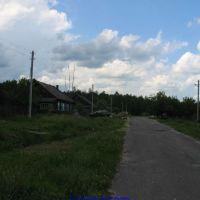 ул.Лесная (12.06.2009), Еленский