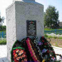 Памятник воинам 50-ой армии (13.06.2010), Еленский