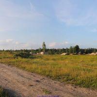 На месте бывшего стекольного завода (12.06.2011), Еленский