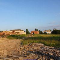 Лес пилят, щепки летят (12.06.2011), Еленский