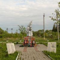 Памятник, Износки