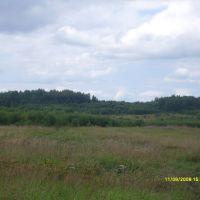 Дорога от Износок до Мусино (Калужская область), Износки