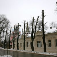 extreme pruning, Калуга