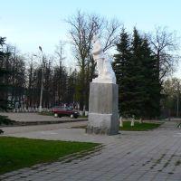 Дедушка Ленин, Киров