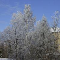 Зима, Киров
