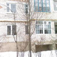 улица Шелаева дом 10, Киров