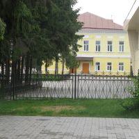 Бывшие дворянские и купеческие дома., Козельск