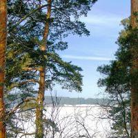 Зима, вид на реку, Кондрово