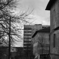 Дома, Кондрово
