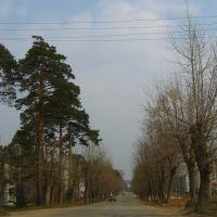 Улица Ленина, Кондрово
