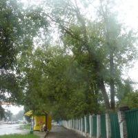 Остановка маршрута №2, Людиново
